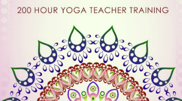 About the Ambassador Yoga Teacher Training